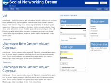 Social Networking Dream